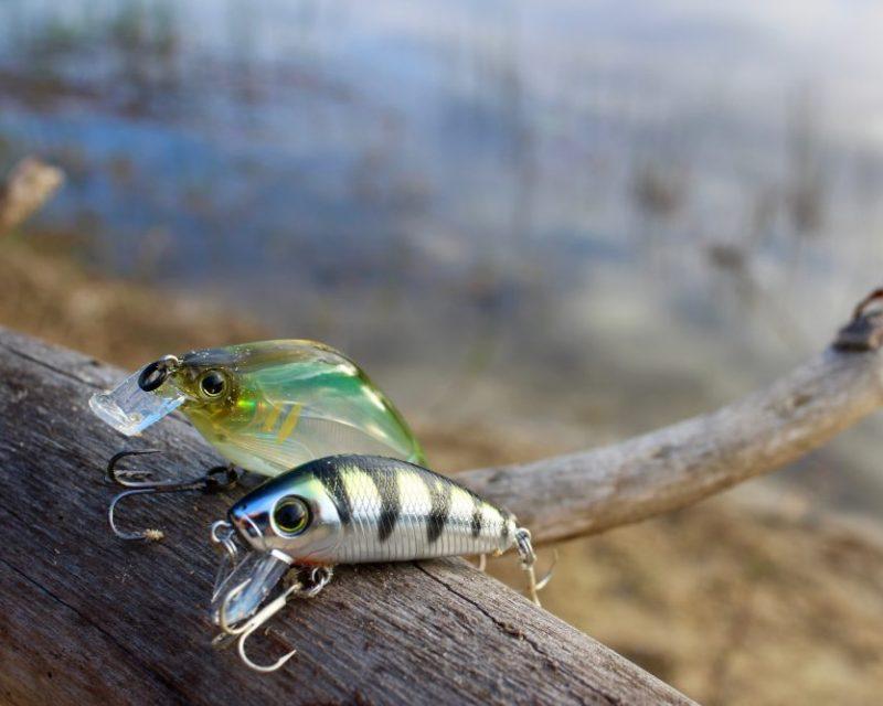 artificial baits|smallmouth-bass-hanson