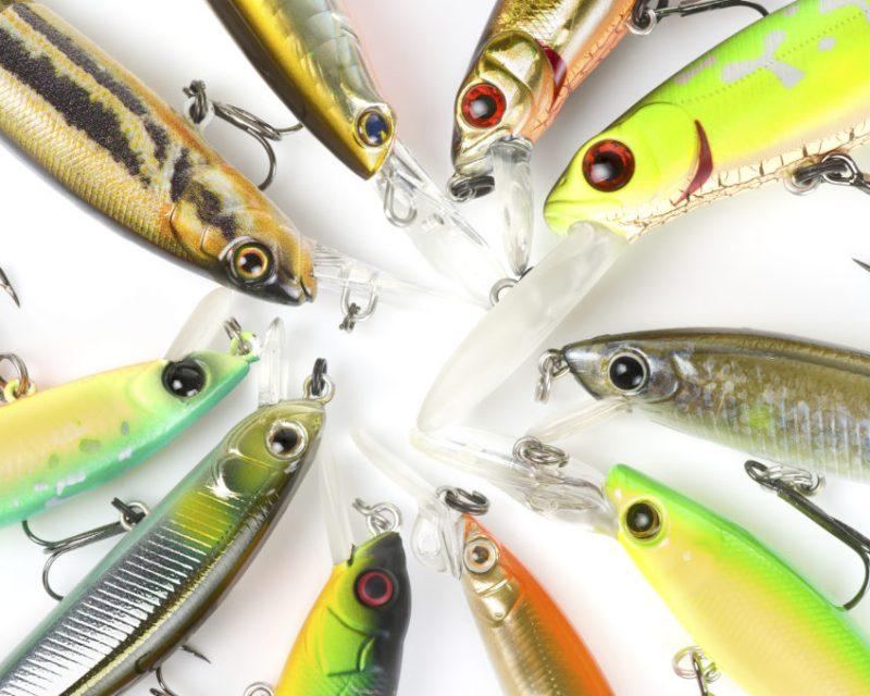 bass fishing jerkbaits